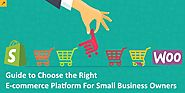 Guide to Choose the Right E-commerce Platform For Small Business Owners
