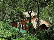 Top Luxury Resorts in Wayanad