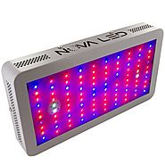 Top 10 Best LED Grow Lights in 2019 Reviews