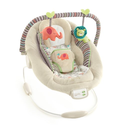 Comfort & Harmony Cradling Bouncer, Cozy Kingdom