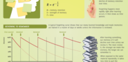 Memory Retention and the Forgetting Curve Infographic - e-Learning Infographics