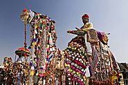 A Complete Guide on Pushkar Camel Fair 2019 - World's Largest Fair