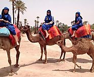 Marrakech group tours