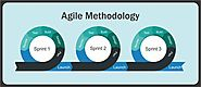 AGILE METHODOLOGY: PERFECT METHOD FOR SOFTWARE DEVELOPMENT AND TESTING