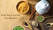 The Rise In Popularity Of Organic Skin Care Brands | Khadi Essentials