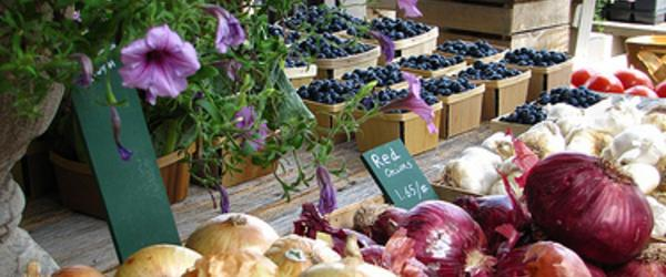 Headline for The Best Farmer's Market in and Around Boston