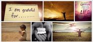 """Power of Gratitude"" #LeadWithGiants w @DanVForbes & Guest @Trifecta_Coach (with images, tweets) · LeadWithGiants"