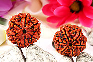 Website at https://www.rudraksha-ratna.com/c/rudraksha