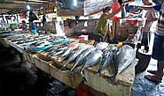 An Affordable And Tasty Seafood Bali To Visit - Thuyloi4a