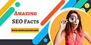 Amazing Facts About SEO That Will Boost Your Business - SEO Warriors