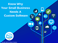 Why You Need a Custom Software for Your Small Business ? | Blog