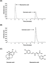 Rosemary (Rosmarinus officinalis) Extract Modulates CHOP/GADD153 to Promote Androgen Receptor Degradation and Decreas...