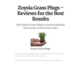 Zoysia Grass Plugs - Reviews for the Best Results