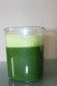 Wheatgrass Juicer | Healthy Wheatgrass Juicers
