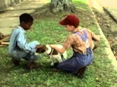 My Dog Skip Trailer