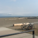 Boundary Bay Beach for Lunch