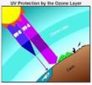UV Protection.