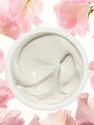 Best All Natural Wrinkle Creams 2014 - Lists and Reviews of Effective Products