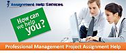 Professional Management Project Assignment Help