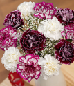 Blackberry Burst | White And Purple Carnations Bouquet | Bunches.co.uk