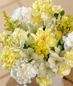 Sunshine Bouquet | Yellow And White Flowers | Carnations | Bunches.co.uk