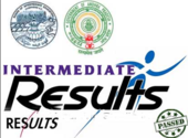 AP Intermediate Results 2014