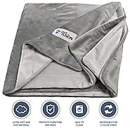"PetFusion Premium Medium Dog Blanket (44x34""). Reversible Gray Micro Plush. [100% soft polyester]"