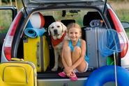 Fun Trips & Vacations – Great Travel Tips for Your Pet