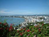 Bangkok to Pattaya One Day Tour
