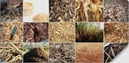 Biomass Briquetting Plant -Plant For the better Future