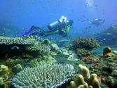 OPEN WATER DIVER COURSE Racha Yai by big boat x 2 Days (incl. manual and certification)