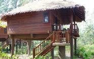 The top 5 Tree house resorts in India