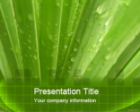 Aloe Vera PowerPoint Template | Free Powerpoint Templates