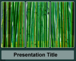 Sugar Cane PowerPoint Template | Free Powerpoint Templates