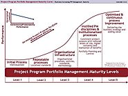 Portfolio, Program and Portfolio Management Maturity Modelusiness Pty Ltd
