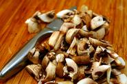 Find Out More about the Health Benefits of Eating Mushrooms