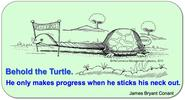 Conant quote on Behold The Turtle, illustrated