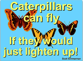 Caterpillars can FLY, if they would just lighten up...
