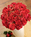 Xmas Flowers | Festive Bouquet XL | Christmas flowers by post from Bunches.