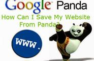 Prevent Your Website from Panda Updates
