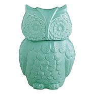 Aqua Blue Ceramic Owl Cookie Jar - Kitchen Things