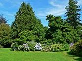 VanDusen Botanical Garden - Wikipedia, the free encyclopedia