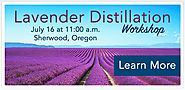 Website at https://www.eventbrite.com/e/lavender-distillation-workshop-tickets-24704630214