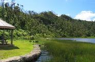 Grand Etang National Park & Forest Reserve | Eco Sites | Attractions | Explore
