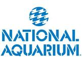 National Aquarium in Baltimore, MD Virtual Tour