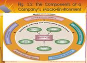 What are the components of Macro environment?