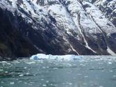 Tracy Arm Alaska. Viewing the icebergs from the Sawyer Glacier.
