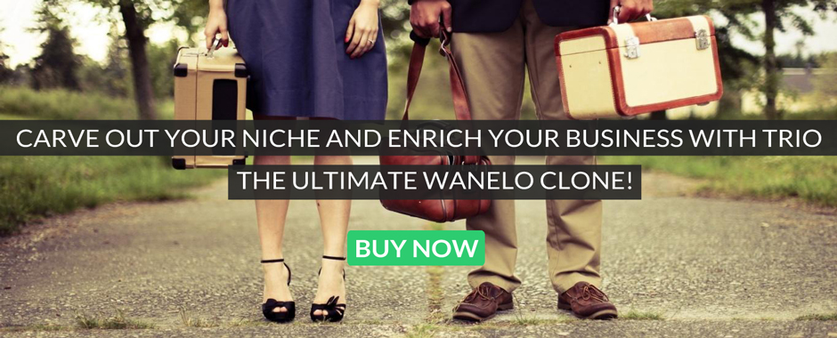 Headline for Wanelo Clone Script