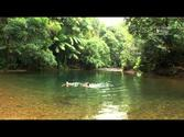 Port Douglas & Daintree, Australia Official Promotion Video