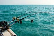 $99 for a Six-Hour Deep Sea Fishing Charter with Equipment and BBQ at Fremantle Fishing Charters ($305 Value)